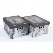 Набор картонных ящиков для хранения А4 Safari  2 шт 0611.20