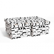 Набор картонных ящиков для хранения А4 усы 2шт 0611.30