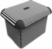 Ящик для хранения STRIPES 15л 10144.1