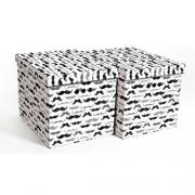 Набор картонных ящиков для хранения XL усы 2шт 1217.30