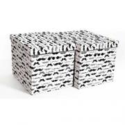 Ящик для хранения картонный ONE усы 34*25*26см 2437.43