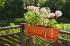 Балконный ящик для цветов  50см