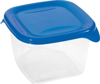 Емкость для морозилки квадр. FRESH & GO 0,45л