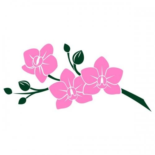 Виниловая Наклейка Glozis Pink Orchid
