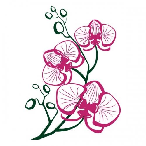 Виниловая Наклейка Glozis Orchid