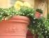 Горшок для цветов  GARDINA 42см