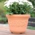 Горшок для цветов  SUNNY 35см
