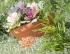 Миска для цветов  SUNNY 30см