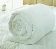 Одеяло «Фабрика снов» силиконовое (бязь)