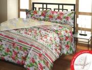 Полуторный комплект постельного белья Бязь «Весна»