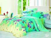 Полуторный комплект постельного белья Сатин «Флоранс»